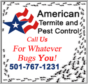 American Termite And Pest copy
